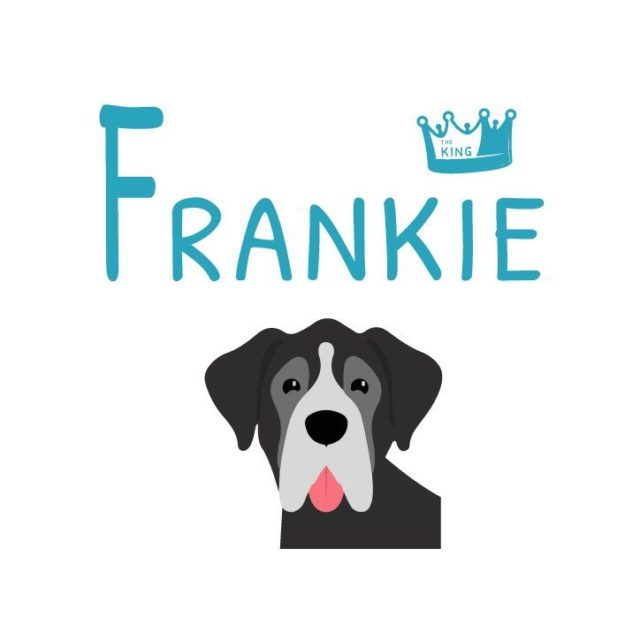 cupon descuento frankie the king